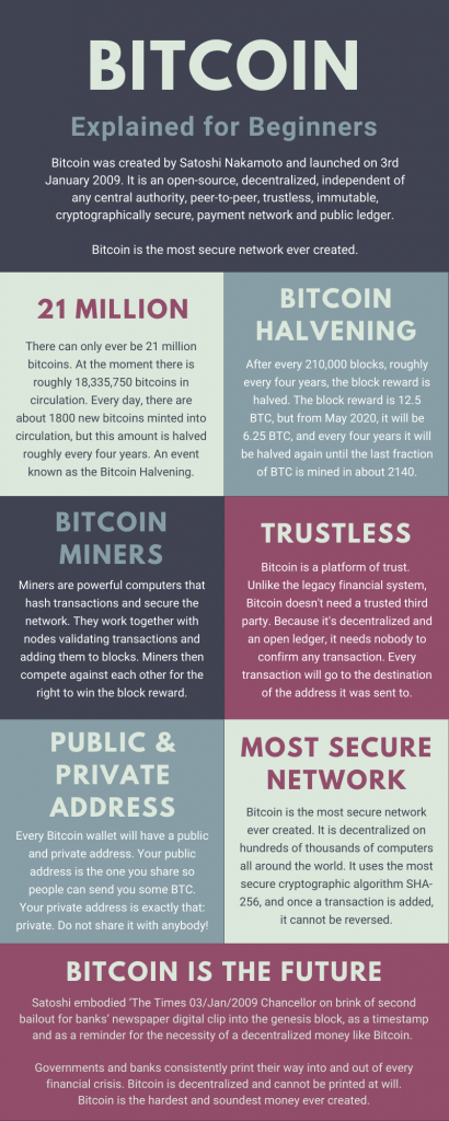 Bitcoin for Beginners Infographic