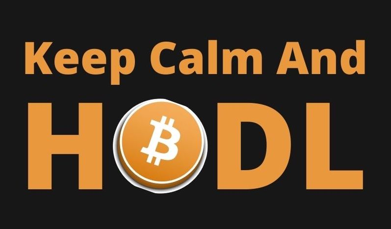 Bitcoin HODLing all time high